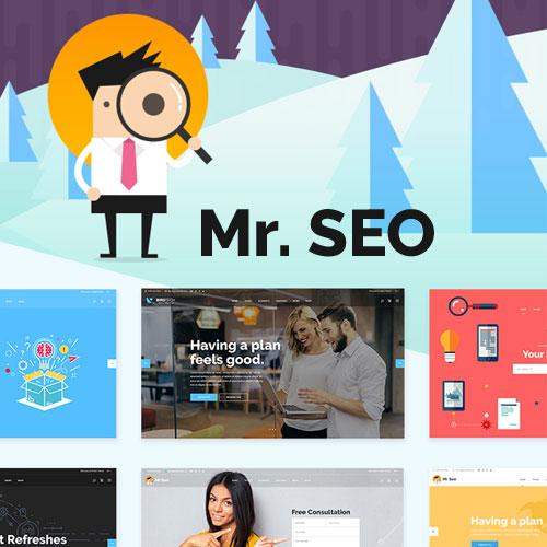 Mr. SEO – SEO, Marketing Agency and Social Media Theme