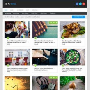 Ad-Sense WordPress Theme Murah