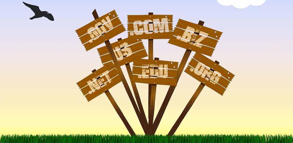 Cara Mencari Aged Domain Berkualitas Untuk PBN & AdSense
